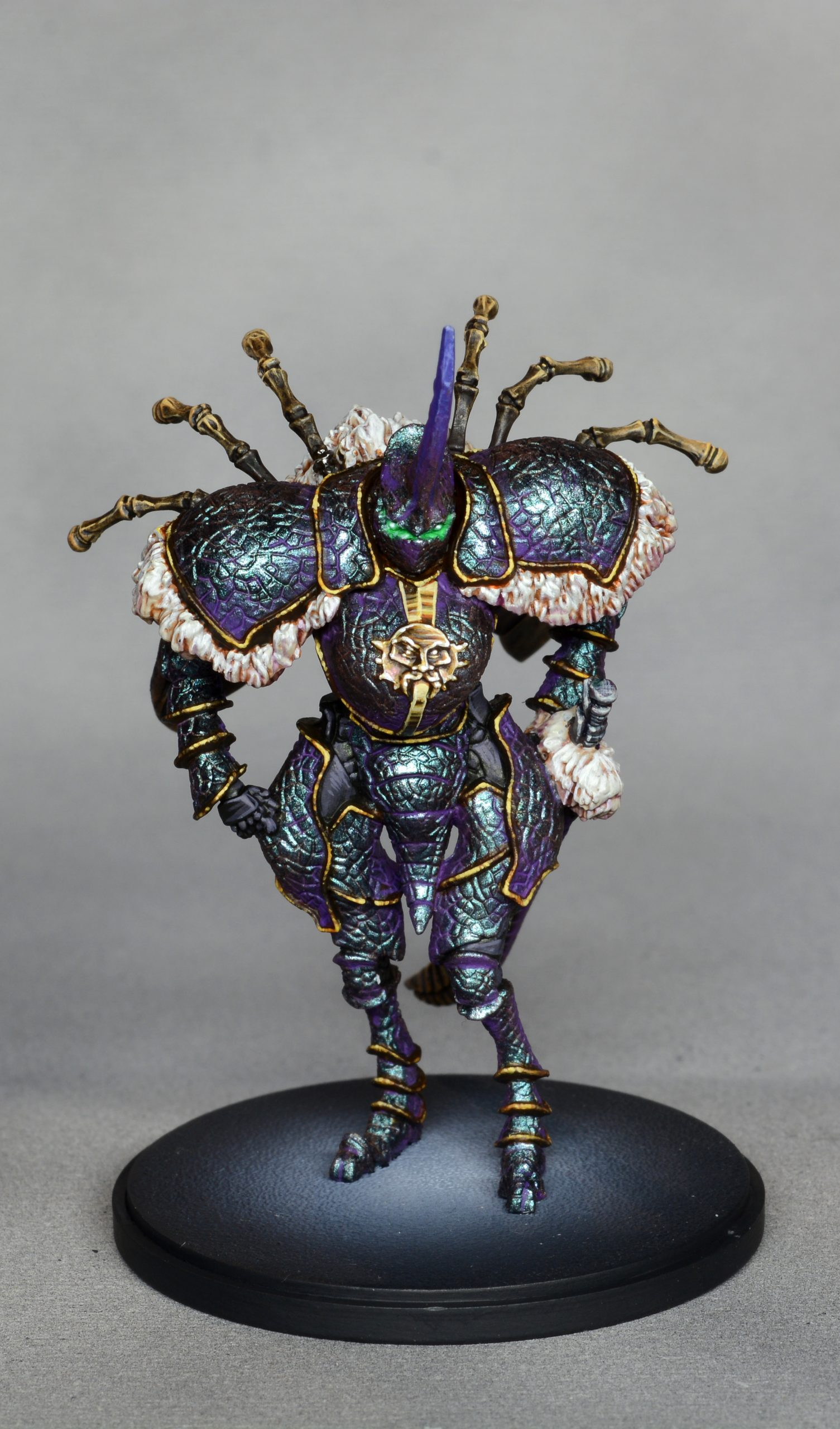 Dung Beetle Knight